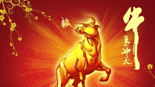 股票配资风控 富牛策略:首创三方监管,打造高风控投资配资理财平台