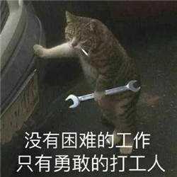 没有困难的工作,只有勇敢的打工人_打工系列_猫咪拿扳手