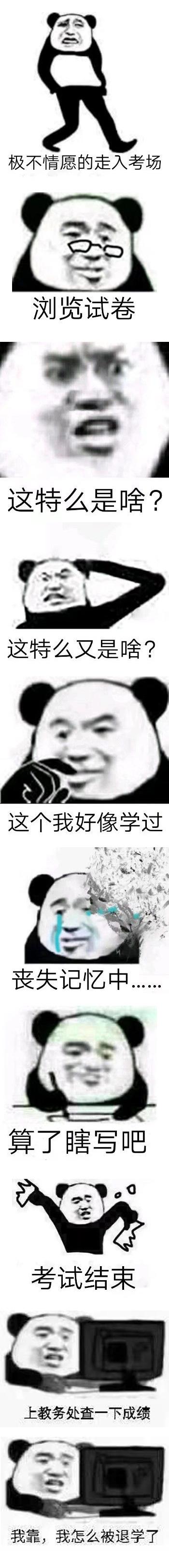 考试系列_长图_这TM考的是啥