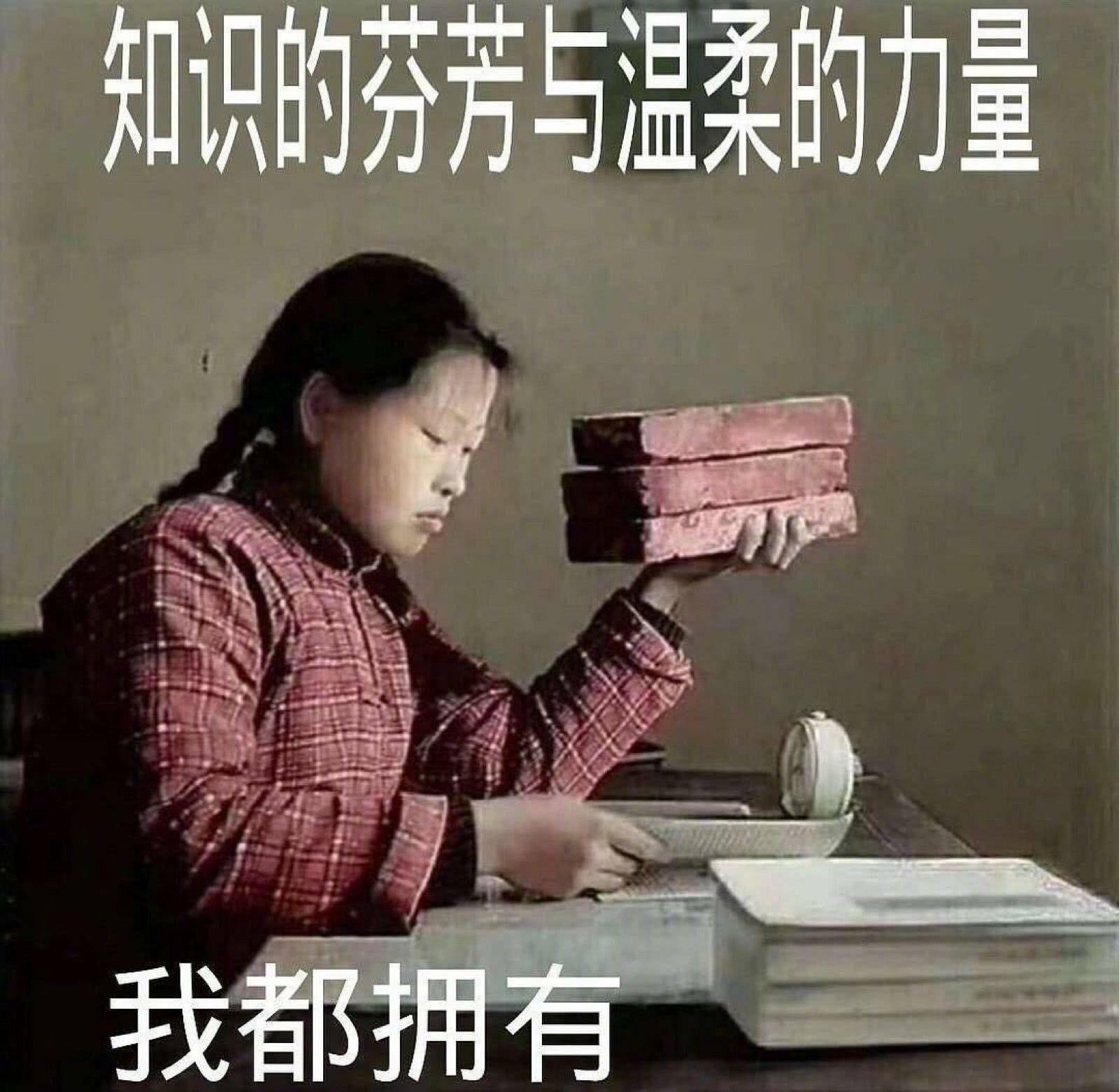 妹子拿砖头学习:知识的芬芳与温柔的力量我都拥有